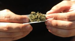 The New York Times a favor de legalizar la marihuana