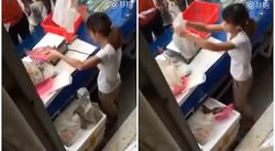 YouTube: vendedora de pescado es captada haciendo esto en pleno mercado (VIDEO)