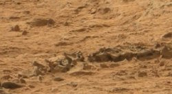 Curiosity captó un esqueleto en Marte [FOTO Y VIDEO]