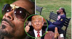 Snoop Dogg fuma marihuana frente a la Casa Blanca y arremete contra presidente Donald Trump (VIDEO)
